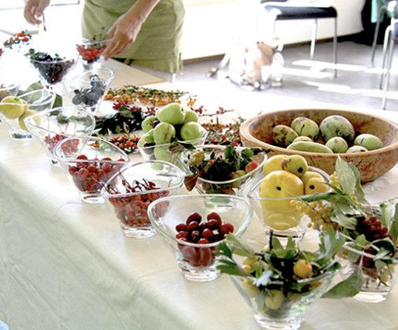 Tagung Gemeinschaftsgärten und essbare Gemeinden