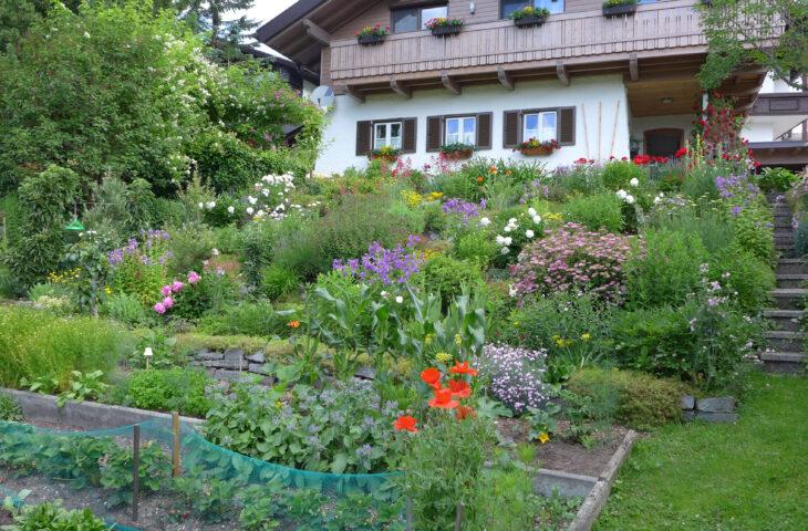 Natur im Garten – Gärtnern für die Artenvielfalt, 09.12.2021